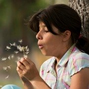 girl blowing a dandelion clock
